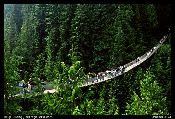 Capilano suspension bridge with tourists. Vancouver, British Columbia, Canada (color)