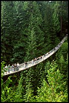Capilano suspension bridge with tourists. Vancouver, British Columbia, Canada