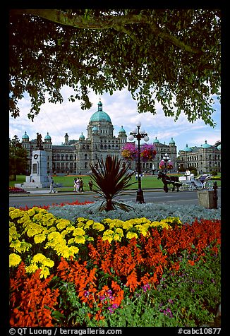 Legislature and horse carriage framed by leaves and flowers. Victoria, British Columbia, Canada (color)