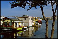 Houseboats. Victoria, British Columbia, Canada (color)