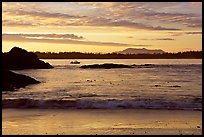 Marine landscape with a small boat in a distance, sunset. Pacific Rim National Park, Vancouver Island, British Columbia, Canada