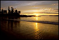 Sunset, Half-moon bay. Pacific Rim National Park, Vancouver Island, British Columbia, Canada ( color)