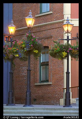 Street lamps with flower baskets and brick wall. Victoria, British Columbia, Canada (color)
