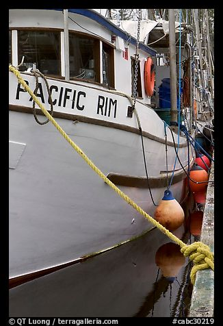 Commercial fishing boat, Uclulet. Vancouver Island, British Columbia, Canada (color)