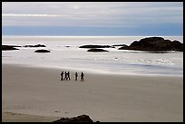 Long Beach. Pacific Rim National Park, Vancouver Island, British Columbia, Canada