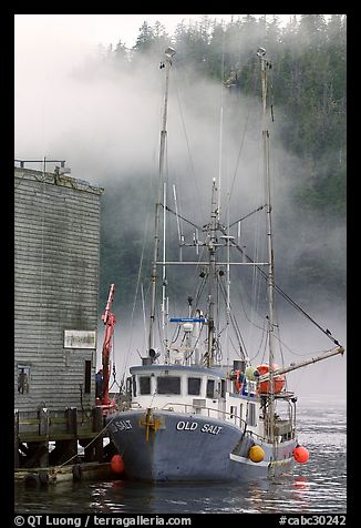 Commercial fishing boat and fog, Tofino. Vancouver Island, British Columbia, Canada