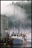 Commercial fishing boat and fog, Tofino. Vancouver Island, British Columbia, Canada (color)