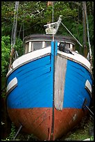 Prow of retired fishing boat. Vancouver Island, British Columbia, Canada ( color)