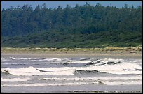 Waves washing on Long Beach. Pacific Rim National Park, Vancouver Island, British Columbia, Canada ( color)