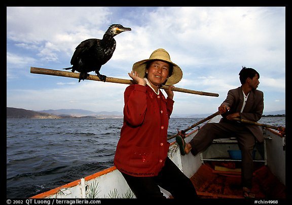 Aboard a cormorant fishing boat. Dali, Yunnan, China