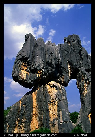 Opening in a limestone formation of the Stone Forest. Shilin, Yunnan, China (color)