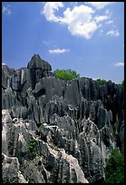 Maze of grey limestone pinnacles and peaks of the Stone Forst. Shilin, Yunnan, China ( color)