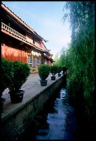 Wooden houses and vegetation near a canal. Lijiang, Yunnan, China ( color)