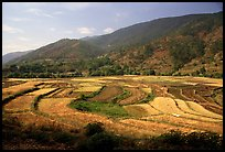 Fields on the road between Lijiang and Panzhihua. (color)