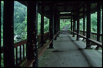 Covered bridge between Qingyin and Hongchunping. Emei Shan, Sichuan, China (color)