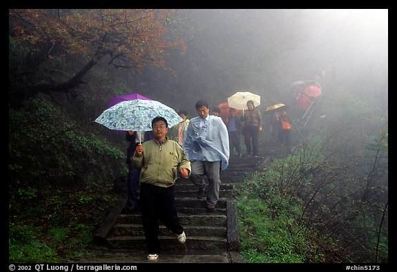 Pilgrims with umbrellas descend some of the tens of thousands of stairs. Emei Shan, Sichuan, China (color)