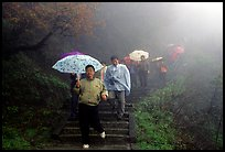 Pilgrims with umbrellas descend some of the tens of thousands of stairs. Emei Shan, Sichuan, China