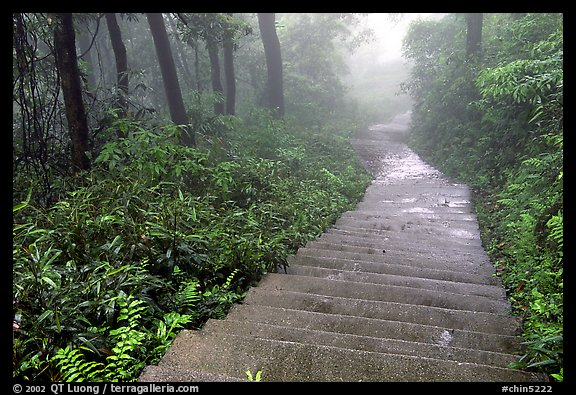 The staircase above Hongchunping. Emei Shan, Sichuan, China (color)