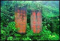 Stone tablets with Chinese scripture. Emei Shan, Sichuan, China