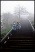 Pilgrims descend stairs beneah Xixiangchi temple in raingear. Emei Shan, Sichuan, China