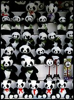 Stuffed pandas for sale. Chengdu, Sichuan, China ( color)