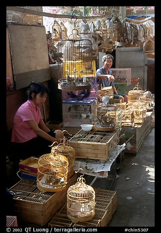 Bird Market. Guangzhou, Guangdong, China (color)