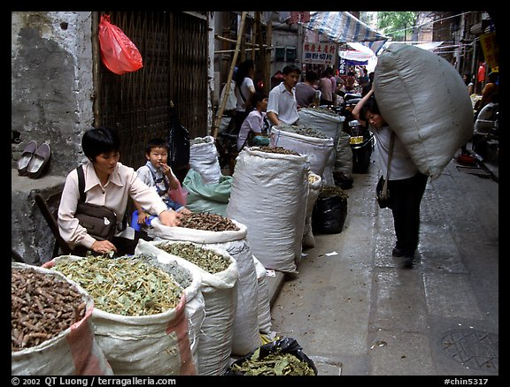 Large bags of dried food items. Guangzhou, Guangdong, China (color)