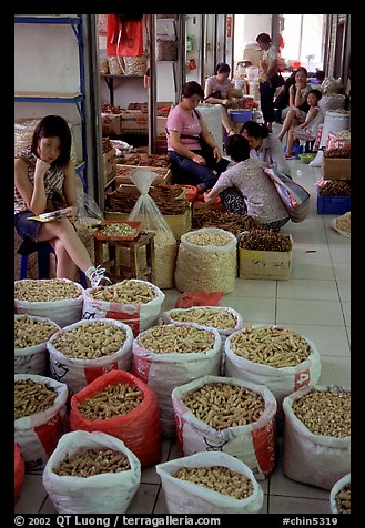 Woman selling dried food items inside the Qingping market. Guangzhou, Guangdong, China
