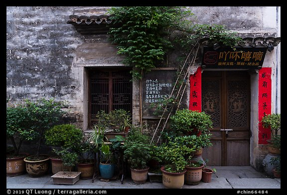 Facade with potted plants. Hongcun Village, Anhui, China (color)