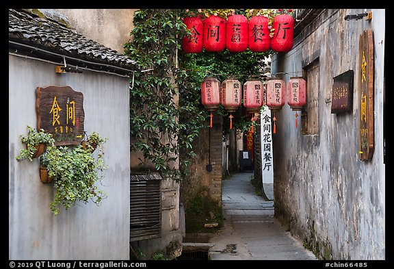 Alley with lanterns and plants. Hongcun Village, Anhui, China (color)