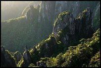 Granite spires with lush vegetation. Huangshan Mountain, China ( color)