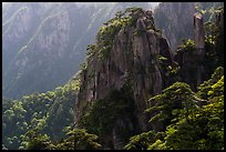 Granite peaks with pines. Huangshan Mountain, China ( color)