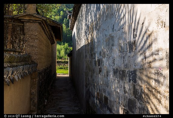 Plant shadow and alley. Xidi Village, Anhui, China (color)