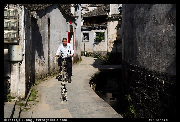 Dog and man on bike. Xidi Village, Anhui, China (color)