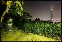 Path on Elephant Mountain with Taipei 101 in the distance at night. Taipei, Taiwan ( color)