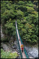 Hikers cross suspension bridge. Taroko National Park, Taiwan (color)