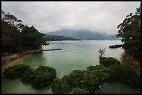 Cove with floating rafts on which plants are being grown. Sun Moon Lake, Taiwan ( color)