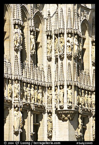 Detail of the gothic town hall. Brussels, Belgium (color)