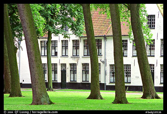 Grassy square in Beguinage (Begijnhof). Bruges, Belgium (color)