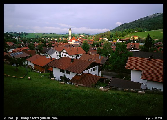 View of Nesselwang. Germany (color)