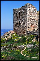 Ruins of the 16th century castle Brahehus near Granna. Gotaland, Sweden ( color)