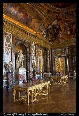 Picture Photo Versailles Palace Room France