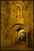Porte Narbonaise gate by night. Carcassonne, France (color)