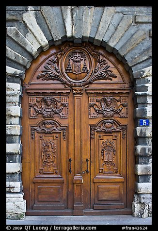 Historic wooden door. Lyon, France (color)
