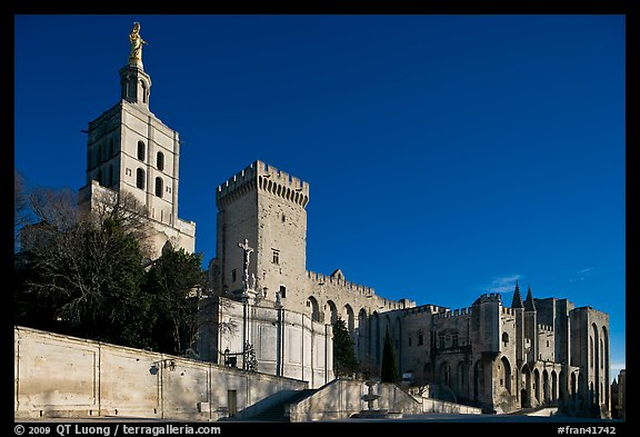 Cathedral of Notre-Dame-des-Doms and Palace of the Popes. Avignon, Provence, France (color)