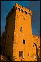Medieval tower. Avignon, Provence, France ( color)