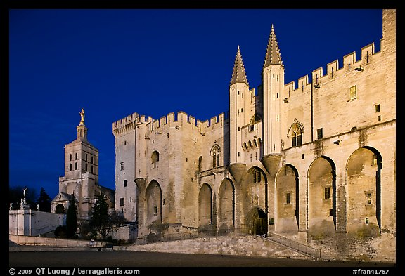 Palace of the Popes and Cathedral at night. Avignon, Provence, France (color)