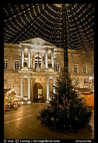 Christmas Tree and City Hall at night. Avignon, Provence, France (color)
