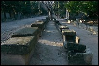 Rows of tombs on Alyscamps ancient burial grounds. Arles, Provence, France (color)