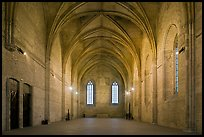 Chapel, Palais des Papes. Avignon, Provence, France (color)